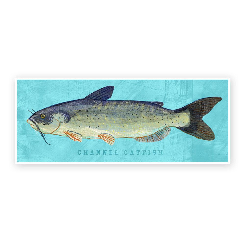 Freshwater fish art - Freshwater Fish Art Channel Catfish Art Print 6 6 X 18 Kids Fish Art Dad Gift Fishing Gift