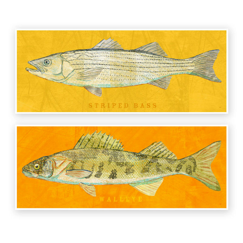 Freshwater fish art the big one fish print pick the fish for Big fish printing
