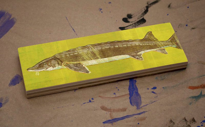 Freshwater Fish Art Medium Art Block- Lake Sturgeon Art Print- 9\