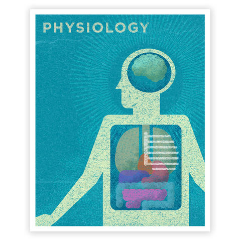 Art,for,Girls,Room,Boys,-,Physiology,Print,8,in,x,10,Retro,Science,Kids,Wall,Digital,Kids_Wall_Art,Art_For_Kids_Room,Kid_Art_Print,Art_For_Boys_Room,Print_For_Boys_Room,Boys_Room_Decor,Retro_Science_Art,Science_Art_Print,Vintage_Science_Art,Phyisology_Art_Print,Boys_Physiology_Art,Art_For_Girls_Room,Girls_Room_Art,Paper