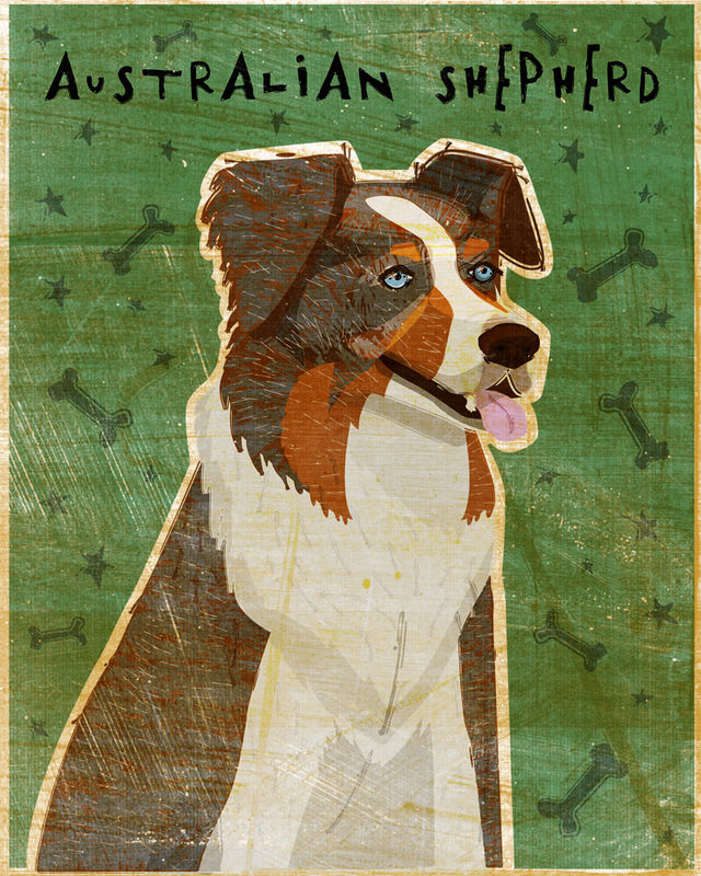 Australian Shepherd Print - Various Colors - product images  of