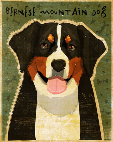Bernese,Mountain,Dog,Print,Art,Illustration,digital,whimsical,cute,dog,animal,bernese mountain dog,paper,ink