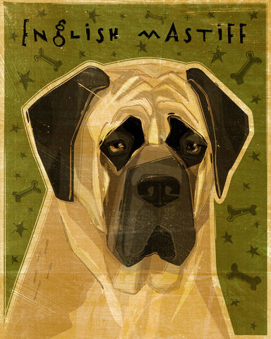 English,Mastiff,Print,-,Various,Colors,Art,Illustration,digital,whimsical,cute,dog,animal,english_mastiff,brindle,fawn,paper,ink