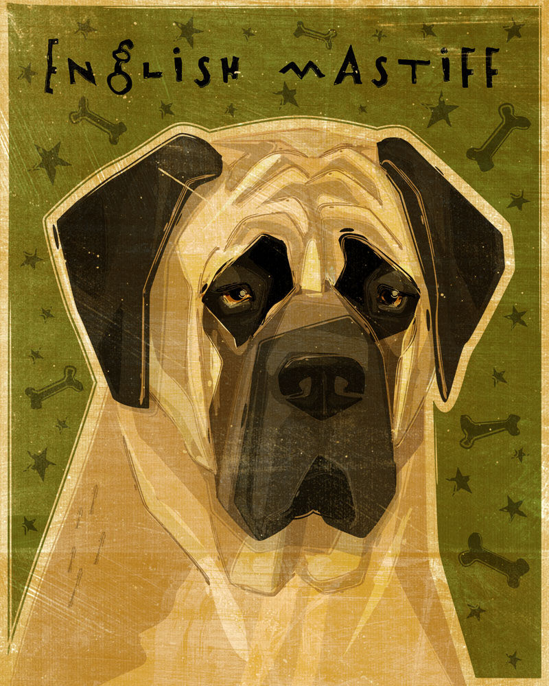 English Mastiff Print - Various Colors - John W. Golden Art