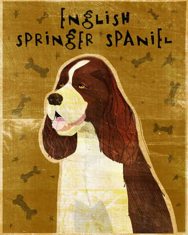 English,Springer,Spaniel,Print,-,Various,Colors,Art,Illustration,digital,whimsical,cute,dog,animal,english_springer_spaniel,black,liver,tri-color,paper,ink