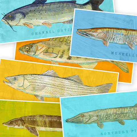 Freshwater,Fish,Art,-,The,Big,One,Print,Pick,the,6.6,in,x,18,Decor,Fathers,Day,Gift,for,Dad,Kids,Digital,Fish_Decor,Coastal_Art,Freshwater_Fish_Art,Fish_Print,Fathers_Day_Gift,Gift_For_Dad,Kids_Fish_Art,Dad_Gift,Paper,Ink