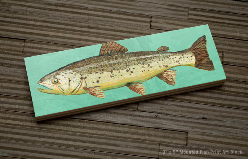 Freshwater Fish Art Series Medium Art Block - Brown Trout Art Print - 9 in x 3 in Fish Wall Decor Fisherman Gift - Fathers Day Gift for Dad - product images  of