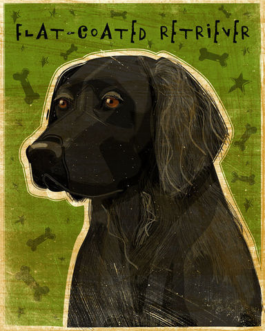 Flat,Coated,Retriever,Print,8,in,x,10,-,Whimsical,Dog,Art,Wall,Decor,Digital,Flat_Coated,Dog_Wall_Decor,Dog_Wall_Art,Dog_Decor,Dog_Print,Dog_Art_Print,Whimsical_Dog_Art,paper,ink