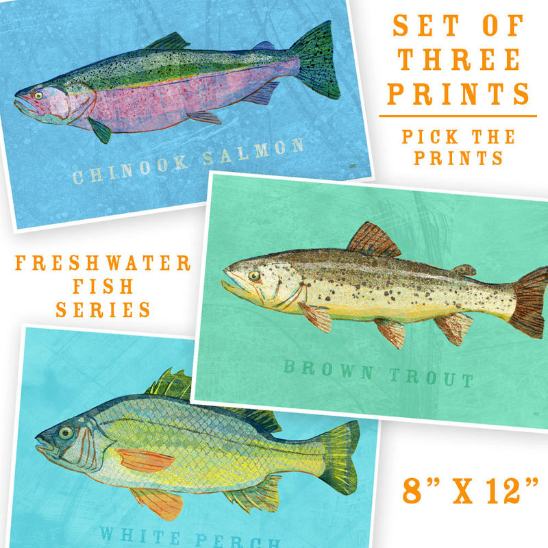 Fish Artwork - 3 Medium Fishies - Set of 3 Prints 8 in x 12 in Kids Fish Art - Fish Decor - Man Cave Art - Lake House Art - Fathers Day Gift - product images  of
