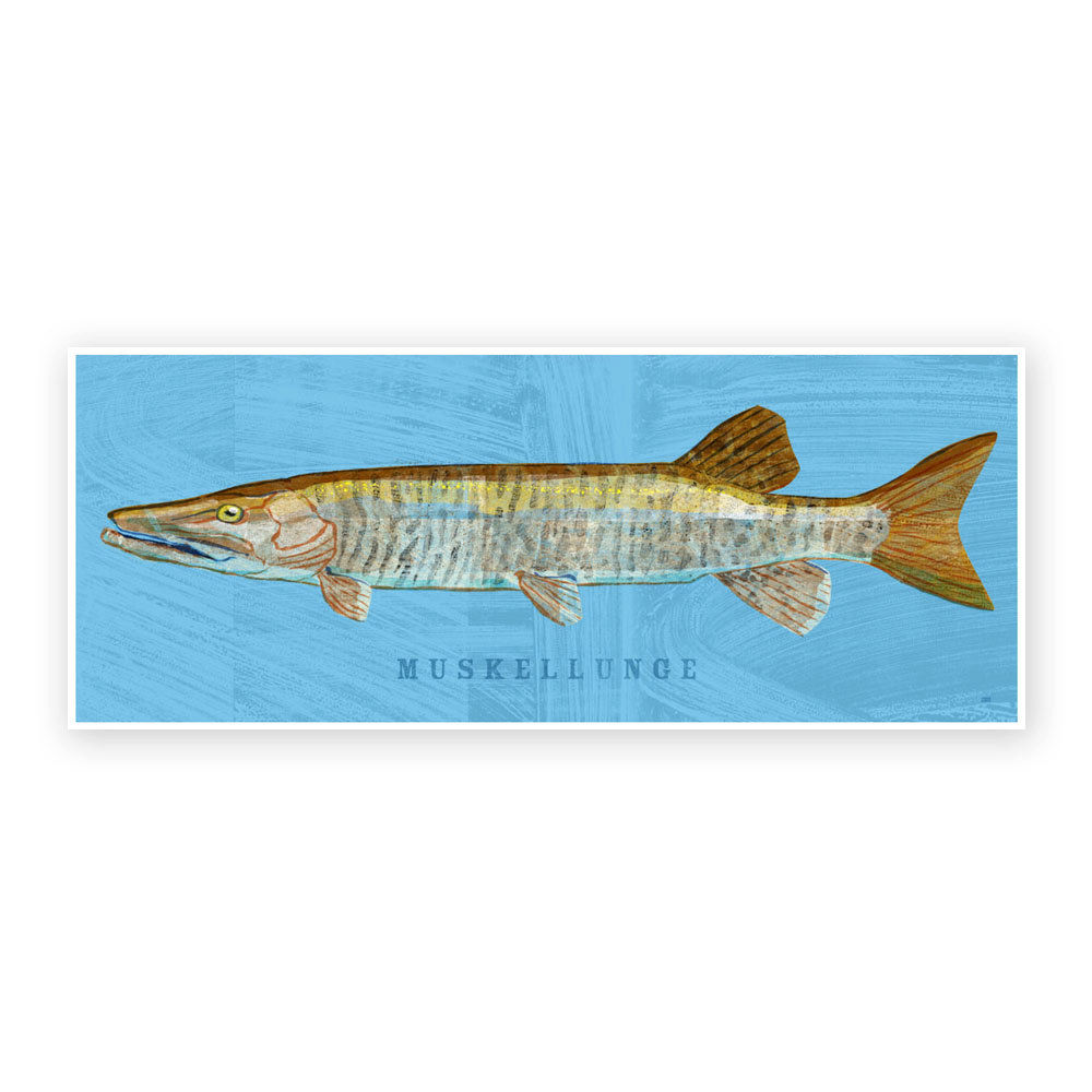 Freshwater fish art - Freshwater Fish Art Muskellunge Art Print 6 6 In X 18 In Fish Decor Fathers Day Gift For Dad Gift Kids Fish Art Fishing Art