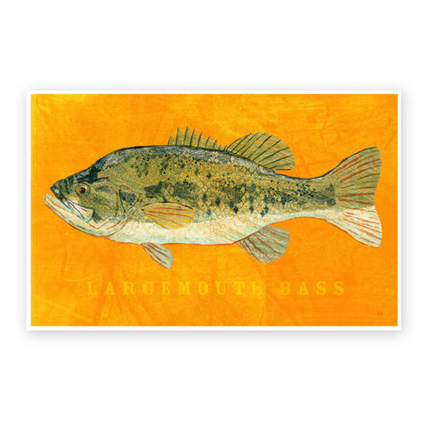 Largemouth,Bass,Art,Print,-,Freshwater,Fish,8,x,12,Decor,Beach,House,Man,Cave,Fathers,Day,Gift,for,Dad,Digital,Fish_Print,Fish_Decor,Coastal_Beach_Decor,Coastal_Art,Coastal_Decor,Man_Cave_Art,Freshwater_Fish_Art,Fathers_Day_Gift,Gift_For_Dad,Largemouth_Bass_Art,Bass_Art_Print,Dad_Gift,Beach_House_Decor,Paper,Ink