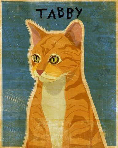 Ginger,Tabby,Print,8,x,10,Art,Illustration,digital,whimsical,cute,animals,animal,ginger,orange,tabby,cat,paper,ink