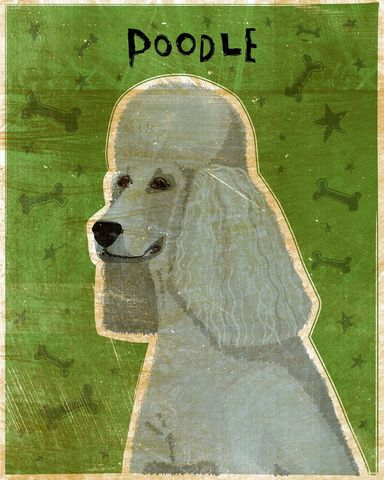 Poodle,(Gray),Print,8,in,x,10,art,illustration,print,digital,whimsical,cute,dog,animals,animal,poodle,gray,green,paper,ink
