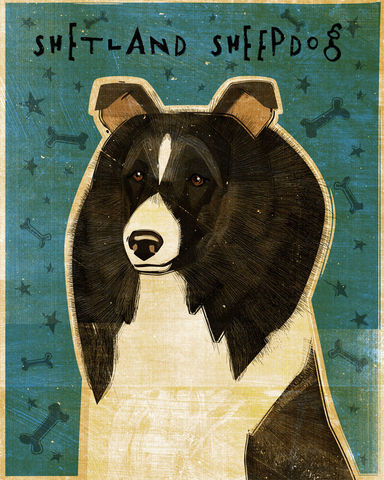 Shetland,Sheepdog,-,Bi-Black,Dog,Art,Print,8,in,x,10,Illustration,whimsical,cute,animals,dog_art,pet,puppy,Dog_Print,shetland_sheepdog,sheltie,black,paper,ink