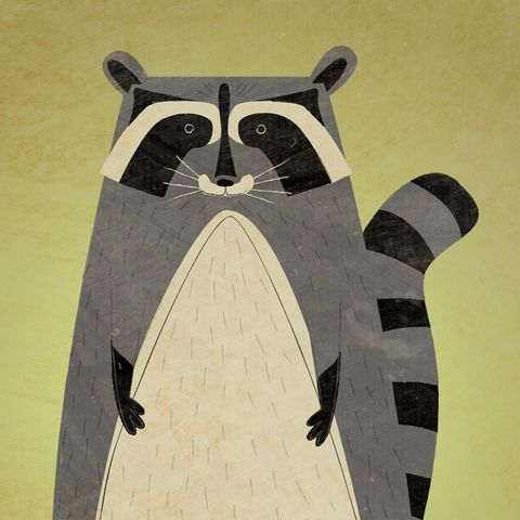 The,Artful,Raccoon,Print,8,in,x,10,children,kids,art,illustration,print,digital,paper,critter,raccoon,green,computer