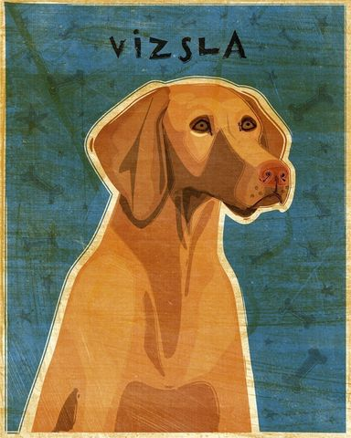 Vizsla,Print,8,in,x,10,Art,Illustration,digital,whimsical,cute,dog,animals,animal,vizsla,paper,ink