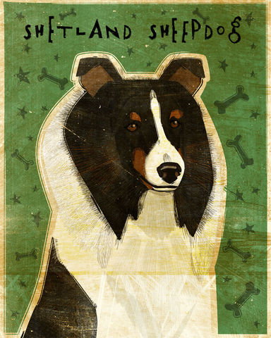 Shetland,Sheepdog,-,Tri-Color,Dog,Art,Print,8,in,x,10,Illustration,whimsical,cute,animals,dog_art,pet,puppy,Dog_Print,shetland_sheepdog,sheltie,tricolor,paper,ink
