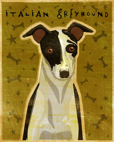 Italian,Greyhound,-,Dog,Art,Print,8,in,x,10,Illustration,whimsical,cute,animals,dog_art,pet,puppy,Dog_Print,Italian_Greyhound,Black,White,Wild_Irish,Split_Face,paper,ink