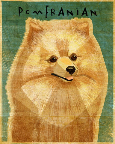 Pomeranian,-,Red,Dog,Art,Print,8,in,x,10,Illustration,whimsical,cute,animals,dog_art,pet,puppy,Dog_Print,Pomeranian_art,red,Pom,paper,ink