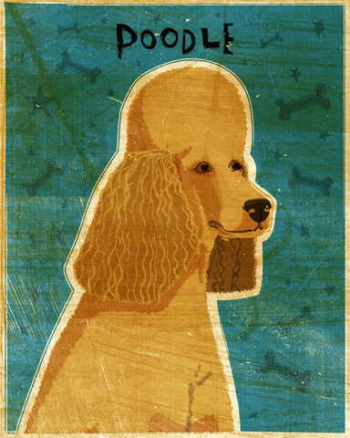 Poodle,(Apricot),Print,8,in,x,10,Art,Illustration,digital,whimsical,cute,dog,animals,animal,poodle,white,blue,paper,ink
