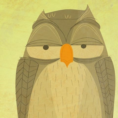 The,Sensible,Owl,Print,8,in,x,10,Art,Illustration,digital,owl,woodland,critter,johnwgolden,jewelry,children,green,paper,ink