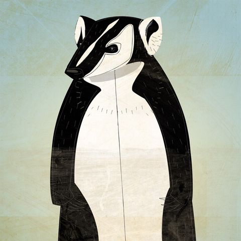 The,Curmudgeonly,Badger,Print,8,in,x,10,Children,Art,kids,art,illustration,print,digital,paper,critter,badger,computer