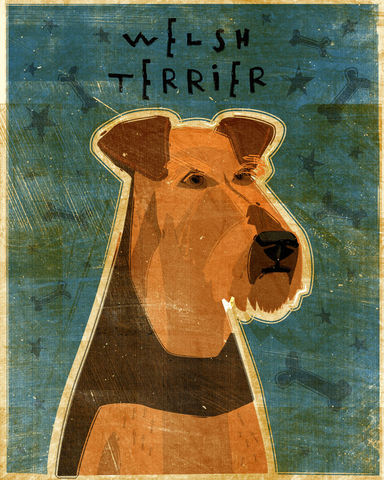 Welsh,Terrier,-,Dog,Art,Print,8,in,x,10,Illustration,whimsical,cute,animals,dog_art,pet,puppy,Dog_Print,Welsh_Terrier,paper,ink