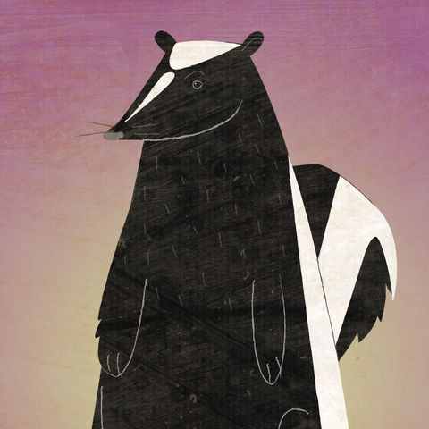 The,Disgruntled,Skunk,Print,children,kids,art,illustration,print,digital,paper,critter,skunk,pink,purple,computer