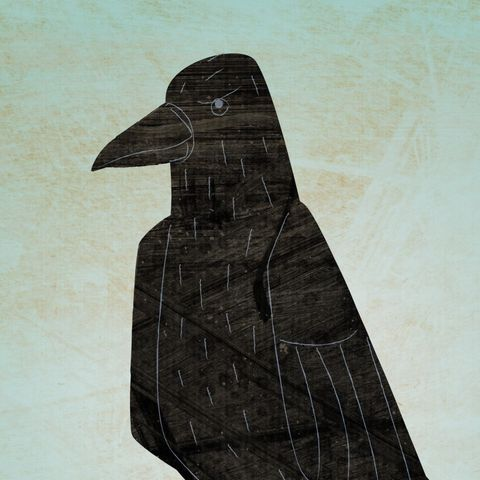 The,Quick-witted,Crow,Print,children,illustration,print,digital,animal,art,crow,bird,paper,ink