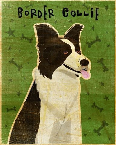 Border,Collie,Print,Art,Illustration,digital,whimsical,cute,dog,animals,animal,border,collie,paper,ink