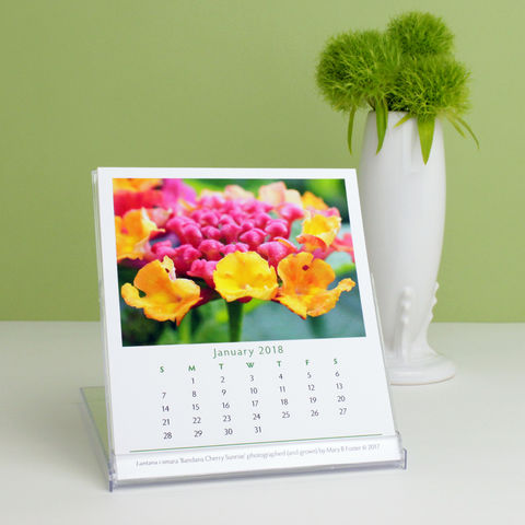 Garden,Flowers,Photography,2018,Desk,Calendar,with,cd,case,easel,garden flowers photography 2018 calendar, 2018 desk calendar, flower photos desktop calendar, cd case easel calendar, cd calendar, small calendar, floral photography, floral art, botanical art, nature photography, fine art photo, Mary Foster Creative
