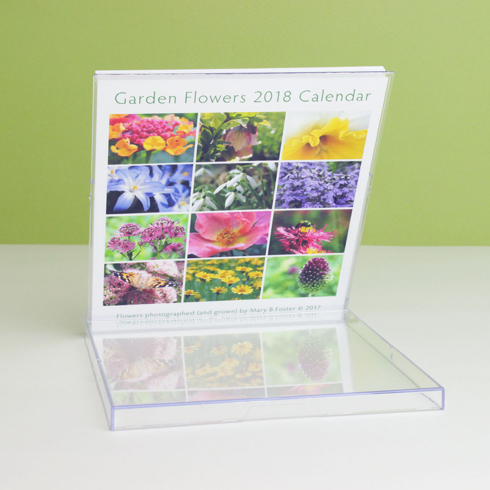 Garden Flowers Photography 2018 Desk Calendar with cd case easel - product images  of