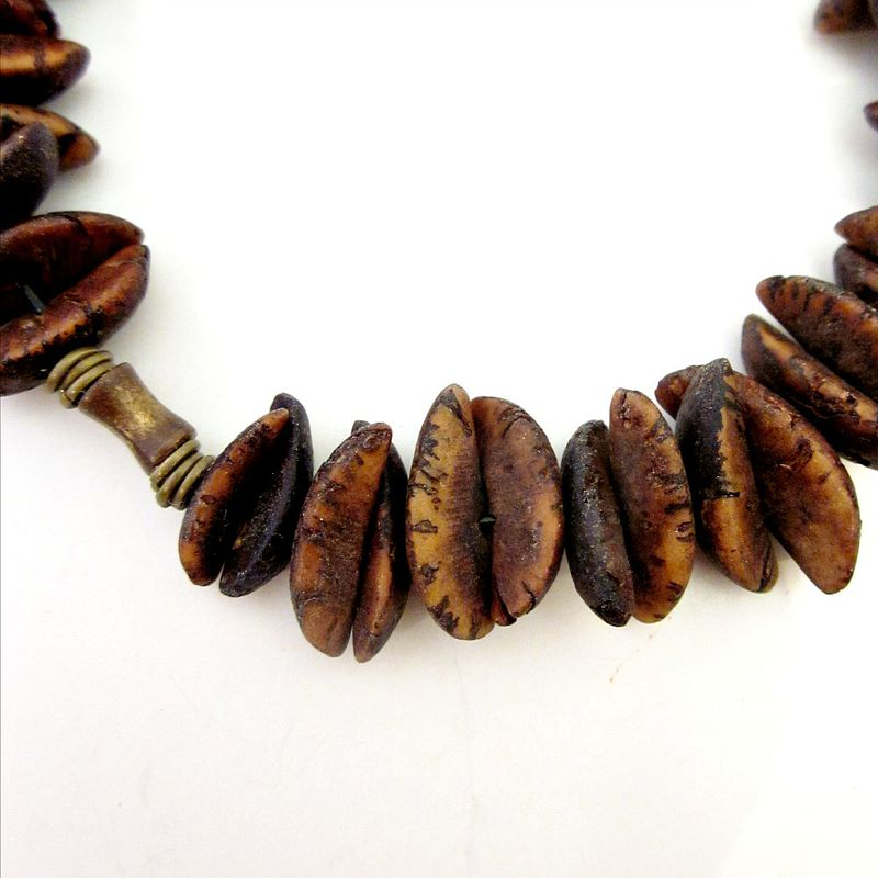 Unisex Stretch Bracelet with Natural Seed Pod Beads - product images  of