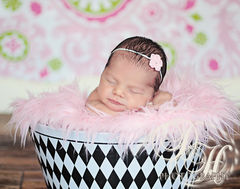 Newborn Headband, Baby Girl, Newborn Photo Prop - product images 4 of 5
