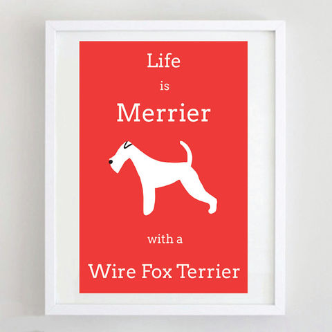Fox,Terrier,Print,Life is Merrier with a Wire Fox Terrier, Fox Terrier Print, Fox Terrier Art, Fox Terrier Poster, Wire Fox Terrier Print, Wire Fox Terrier Art