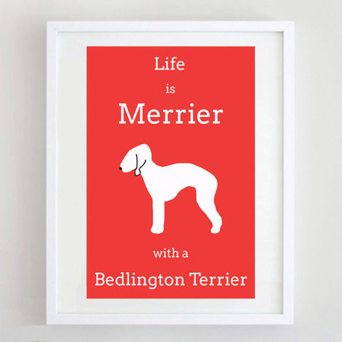 Bedlington,Terrier,Print,Life is Merrier with a Bedlington Terrier, Bedlington Terrier Art