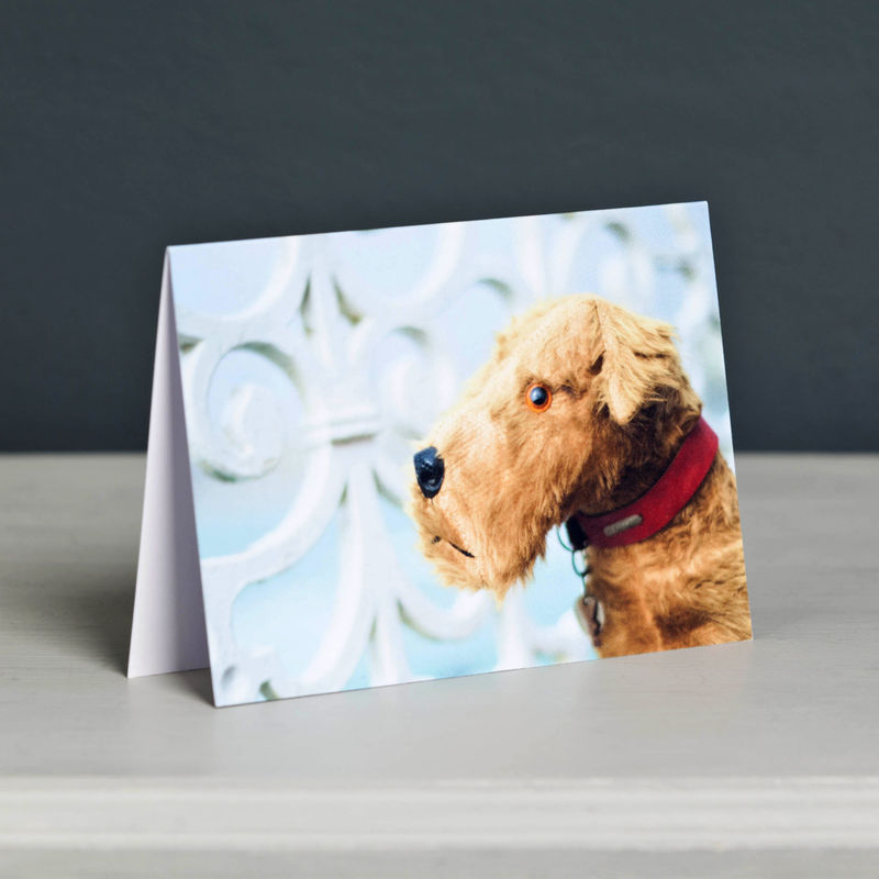 Spangles Vintage Terrier on Wheels Greeting Card - product image