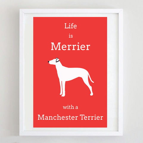 Manchester,Terrier,Print,Life is Merrier with a Manchester Terrier, Manchester Terrier Art