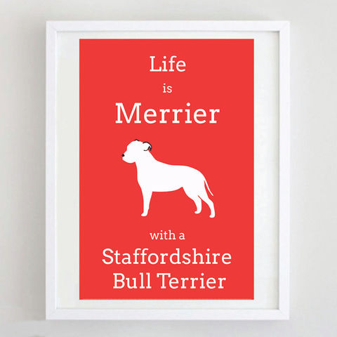 Staffordshire,Bull,Terrier,Print,Life is Merrier with a Staffordshire Bull Terrier, Staffordshire Bull Terrier Art, Staffie Print