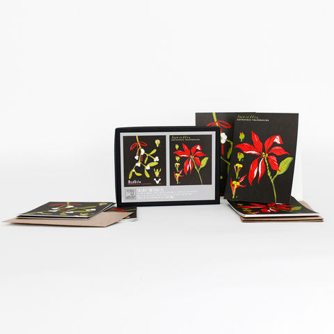 Holiday,Botanical,Card,Set,yellow owl workshop, christine schmidt, card sets, botanical card set, mistletoe card, poinsettia card, holiday card set