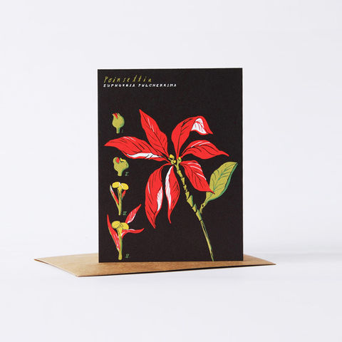 botanical,card,-,poinsettia,christine schmidt, yellow owl workshop, greeting card, poinsettia card, holiday card