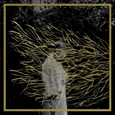 Forest,Swords,‎–,Engravings,2xLP,Forest Swords, Engravings, LP, Tri Angle, vinilo, comprar, twosteprecords, two step records, Two-Step Records