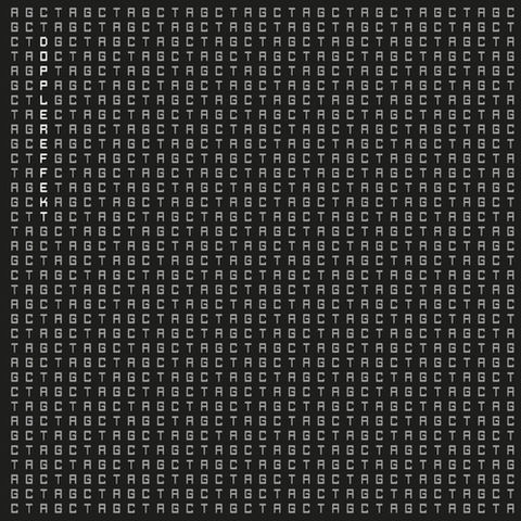 Dopplereffekt,–,Tetrahymena,EP, Tetrahymena, Leisure System, LP, vinyl