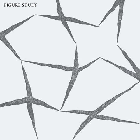 Figure,Study,‎–,LP,Figure Study, Figure Study, Dark Entries, LP, vinyl