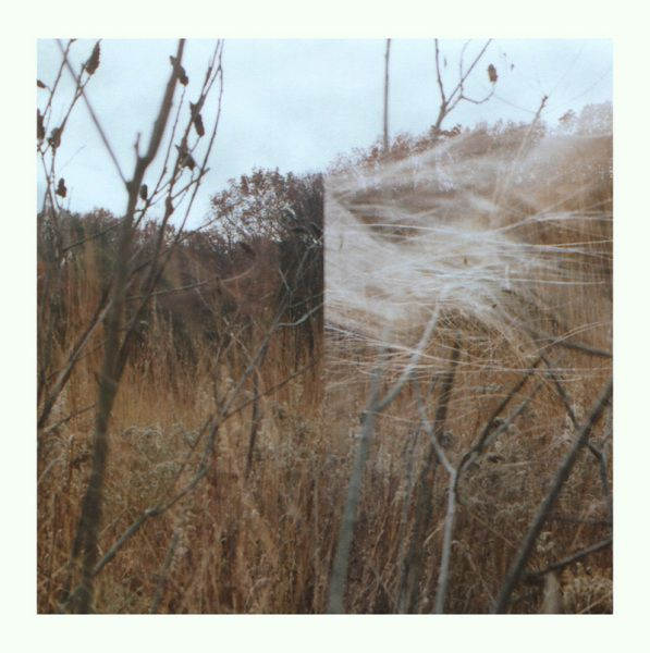 Benoît Honoré Pioulard – Plays Thelma LP - product images