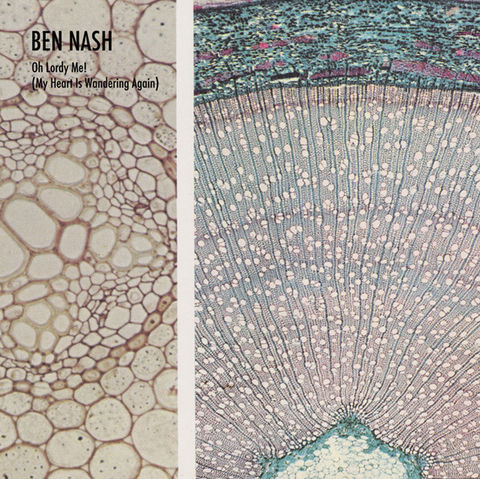 Ben,Nash,-,Oh,Lordy,Me!,(My,Heart,Is,Wandering,Again),LP,Ben Nash, Oh Lordy Me! (My Heart Is Wandering Again), LP, Blackest Rainbow, vinilo, comprar, twosteprecords, two step records, Two-Step Records