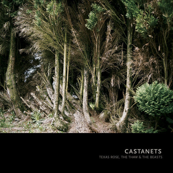 Castanets – Texas Rose, The Thaw & The Beasts LP - product images