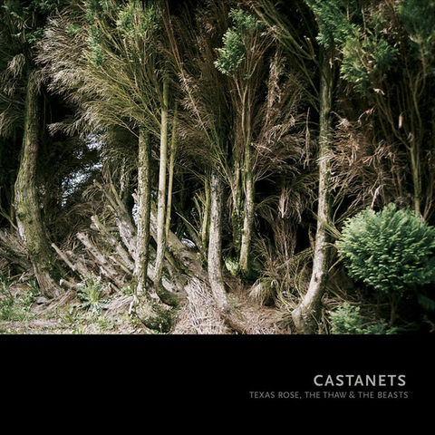 Castanets,–,Texas,Rose,,The,Thaw,&,Beasts,LP, Texas Rose, The Thaw & The Beasts, Asthmatic Kitty, Vinyl, vinilo, comprar, twosteprecords, two step records, Two-Step Records