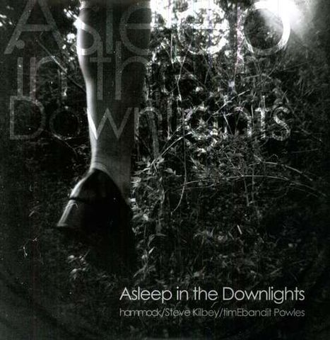 Hammock,/,Steve,Kilbey,timEbandit,Powles,,Asleep,In,The,Downlights,EP,Hammock / Steve Kilbey / timEbandit Powles, Asleep In The Downlights, Hammock Music, EP, LP, vinyl