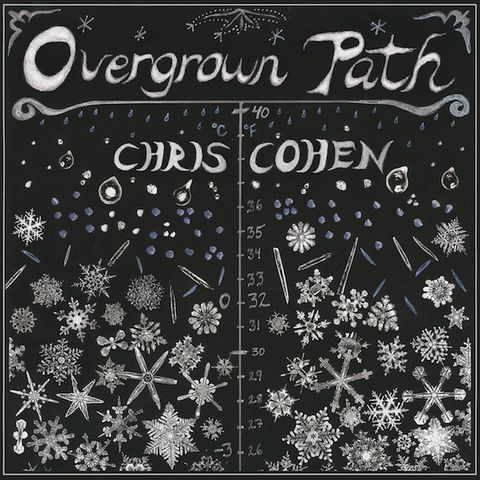 Chris,Cohen,,Overgrown,Path,LP,Chris Cohen, Overgrown Path, LP, Captured Tracks, Vinilo, vinilo, comprar, twosteprecords, two step records, Two-Step Records